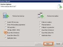 Restoring VM Files on Veeam Backup & Replication 9