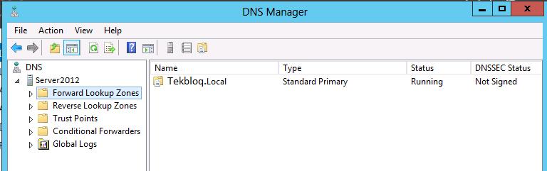 11DNS-windows-server