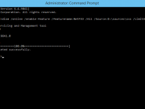Offline install of .NET Framework 3.5 in Windows 10 with DISM