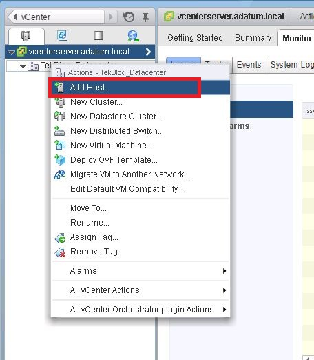 how to connect to esxi host using web client