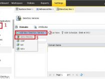 Configuring directory services and users on Symantec Data Insight 4.5